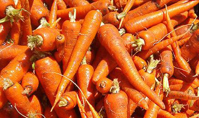 Mercer Carrots