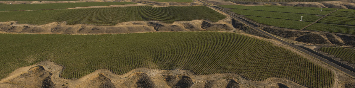 Aerial view over Mercer Estate Vineyards, Horse Heaven Hills AVA, Washington